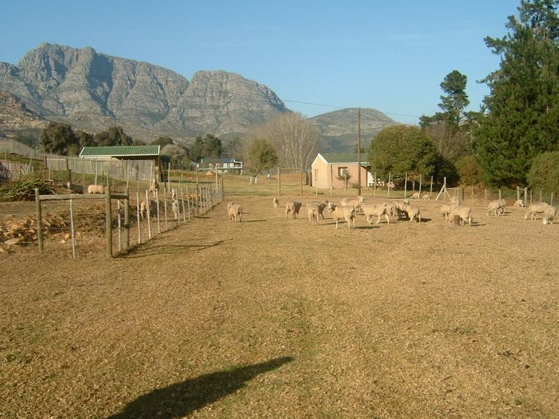 Property For Sale in George Rural, George 4